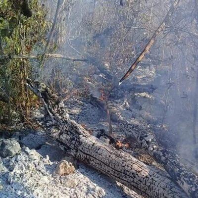 Incendio afecta a unas 200 hectáreas en Felipe Carrillo Puerto
