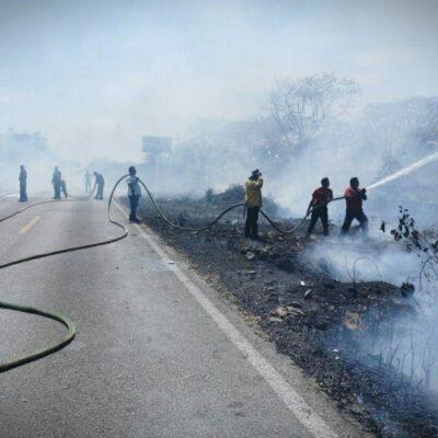 Cuerpos de emergencia combaten tres incendios forestales en Leona Vicario