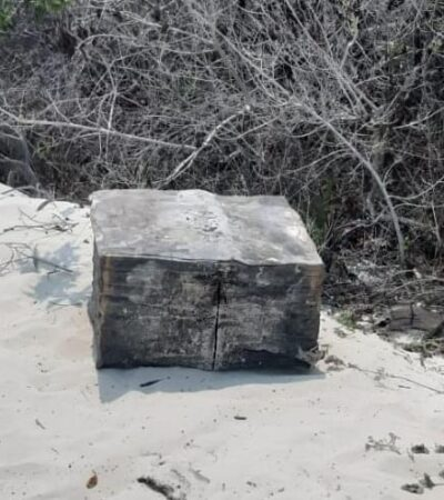 EL TRASIEGO DE DROGA NO PARA… NI CON LA CONTINGENCIA: Recalan 50 kilos de cocaína en Playa del Carmen
