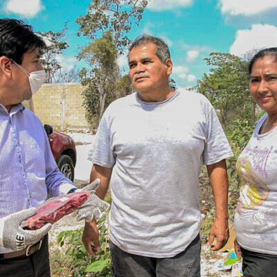 Encabeza Alcalde Víctor Mas Tah  entrega de alimentos en colonias 'Cristal' y 'Yaaxtulum' en Tulum