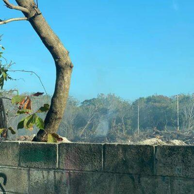 Devastación de predio frente al parque Kabah en Cancún fue clausurada desde el jueves, justifica secretario de Desarrollo Urbano