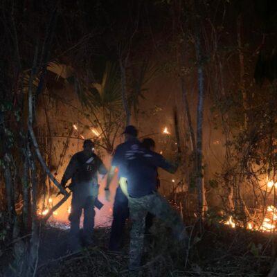 Invade humo fraccionamientos de Playa del Carmen, por incendio forestal