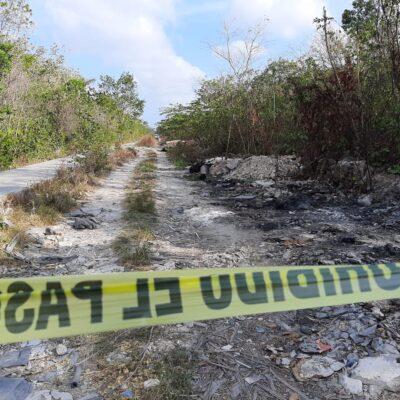 Encuentran cabeza humana en área verde de Cancún