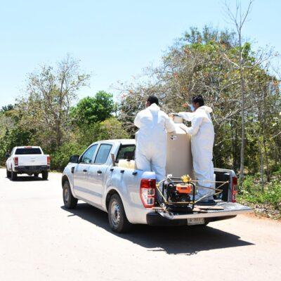 Ayuntamiento carrilloportense desinfecta comunidad por presunción de coronavirus