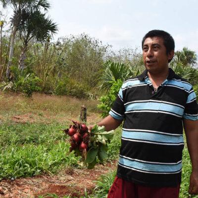 Horticultores carrilloportenses deploran cierre de accesos que los llevará a la quiebra
