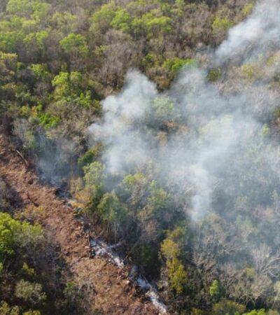Incendios forestales dañan más de 400 hectáreas de selva en Lázaro Cárdenas