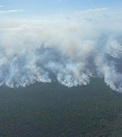 Alerta en zona de Bacalar por incendio forestal