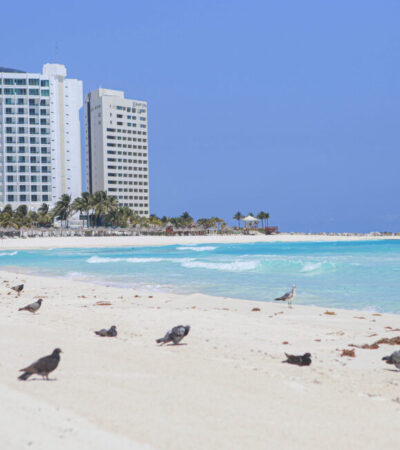 Cerradas casi 41 mil habitaciones de hotel en Cancún por COVID-19