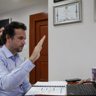 Respaldan Ley de Bienestar Animal y prohíben la circulación de calesas en Cozumel