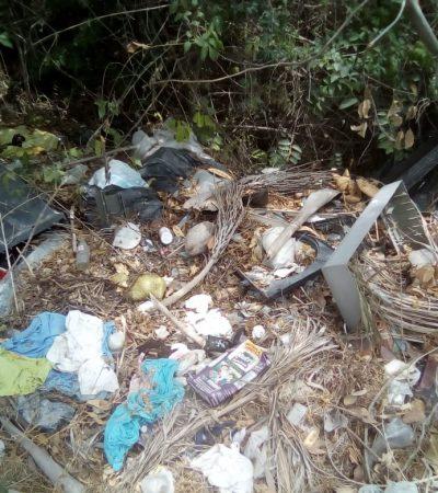 Vuelven a surgir basureros clandestinos en Cancún