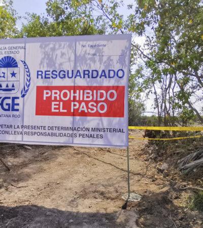 Resguarda FGE zona de manglar y humedales 'aparentemente' afectados en Mahahual