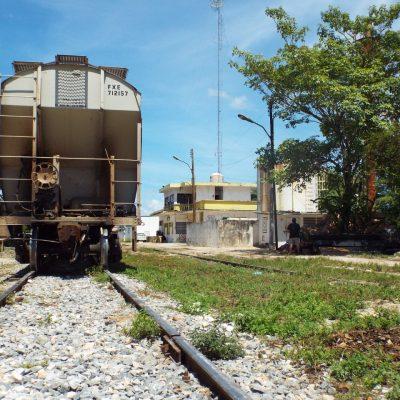 Ordena juez suspender construcción del Tramo 1 del Tren Maya; Fonatur dice que no acatará resolución
