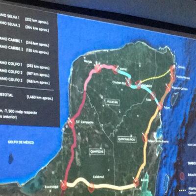 Ambientalistas piden al Estado Mexicano cancelar proyecto del Tren Maya