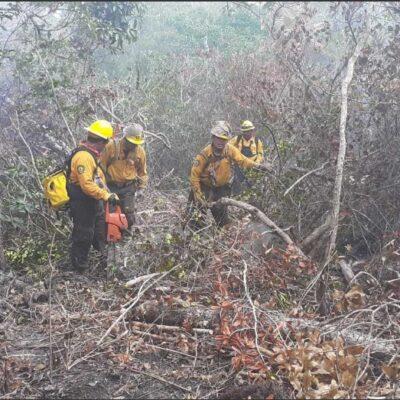 Gobierno Federal reporta incendio en Área Natural Protegida de Othón P. Blanco