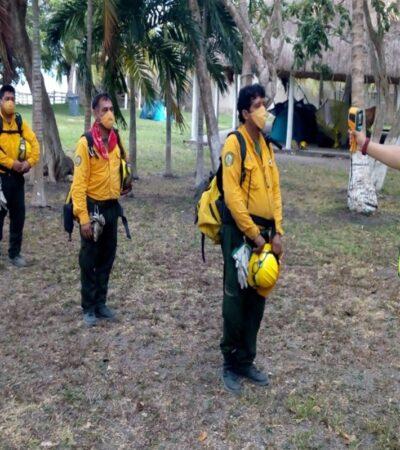 Quintana Roo se encuentra libre de incendios forestales