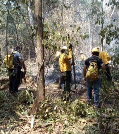 Vuelve Quintana Roo al primer lugar nacional de incendios forestales, tras registrar nuevos siniestros activos