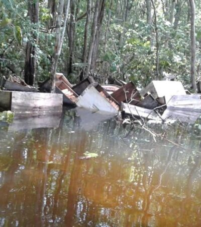 Lluvias dejaron daños en el 80% de apiarios en la Península de Yucatán
