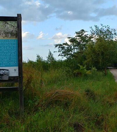 Asociaciones ambientalistas de QR condenan reducción presupuestal de Conanp y Semarnat