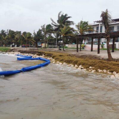 Acumulación de sargazo y fuerte oleaje rompen instalación de barreras antisargazo en Mahahual