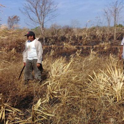 Alistan regulación del aprovechamiento de suelo en José María Morelos