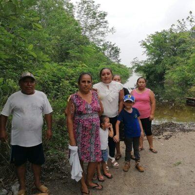 Piden ayuda para familias de comunidades mayas que perdieron cultivos y animales por las inundaciones