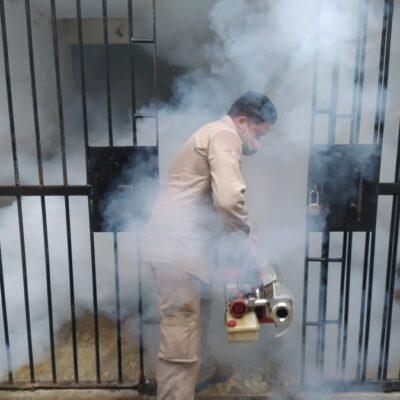 Nebulizan la cárcel de Cozumel por posible caso de Dengue