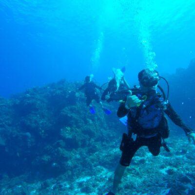 SE HUNDEN EXPECTATIVAS DE PRONTA RECUPERACIÓN: Pierde turismo de buceo cerca de 6 mdd de marzo a junio en Cozumel