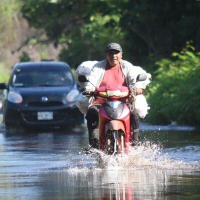 Escurrimiento de aguas inunda viviendas de comunidad carrilloportense
