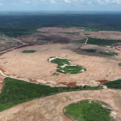 Yucatán obtiene medalla de oro en seguridad, pero se lleva la peor calificación en materia ambiental