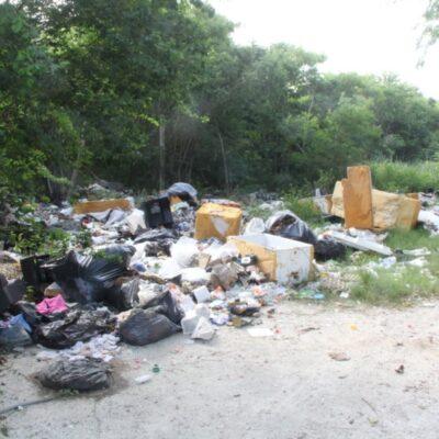 Denuncian incremento de basureros clandestinos en el fraccionamiento Corales de Cancún