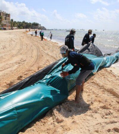 Instalación de barreras antisargazo apenas lleva un avance del 40% en Playa del Carmen