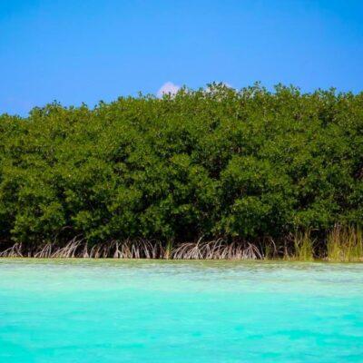 Analiza Conanp propuesta de decretar 'hábitat crítico' a la Laguna de Bacalar