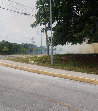Reportan incendio de maleza cerca de instalaciones deportivas de Cancún