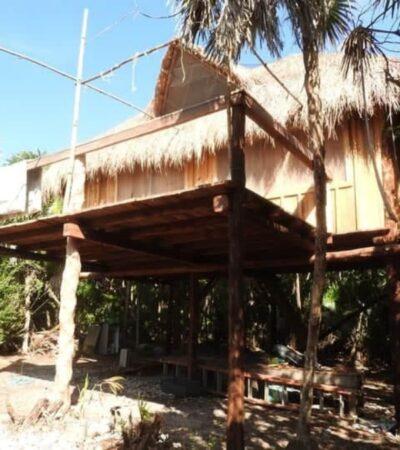 Ayuntamiento de Cozumel dio permisos para que empresa de EU construyera en área natural protegida, denuncian ambientalistas