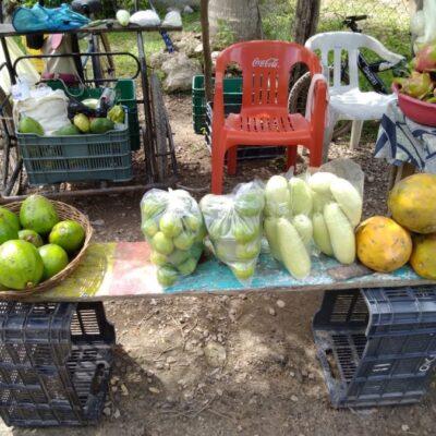 Por falta de visitantes, se desploman las ventas de frutas y verduras en poblados aledaños a Raudales