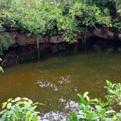 COVID-19 golpea economía de comunidades ecoturísticas de Lázaro Cárdenas