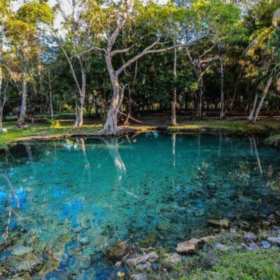 Analizarán el Programa de Ordenamiento Ecológico Local de José María Morelos