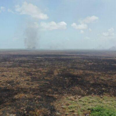 FUEGO EN LA RESERVA: Suman 4 mil 700 hectáreas afectadas por incendio forestal en la Biosfera de Sian Ka'an