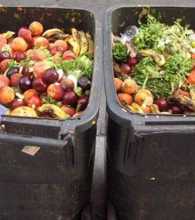 Preocupa generación de altas cantidades de desperdicios alimentarios en la zona urbana de Mérida