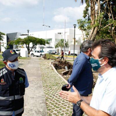 Más de 500 voluntarios, entre funcionarios y trabajadores municipales, inician labores de limpieza de calles y avenidas en Cozumel