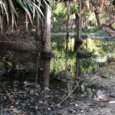 Campesinos mayas critican la pasividad de autoridades estatales tras desaparición del Fonden