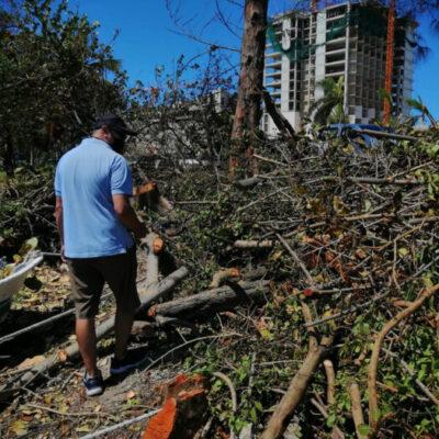 Vinculan a proceso a 5 sujetos que destruyeron manglar en zona hotelera de Cancún