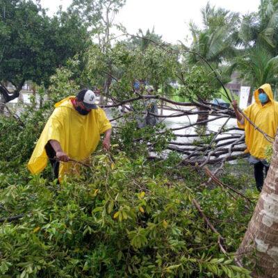 Destaca alcaldesa de Puerto Morelos la coordinación de los tres órdenes de gobierno, con la activa participación ciudadana, para atender la contingencia de la tormenta tropical 'Gamma'